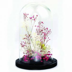 Cloche en verre Pink Yellow Ø10