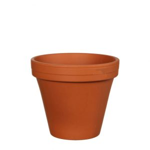 Pot STAN