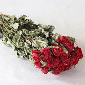 Rose  fleurs séchées